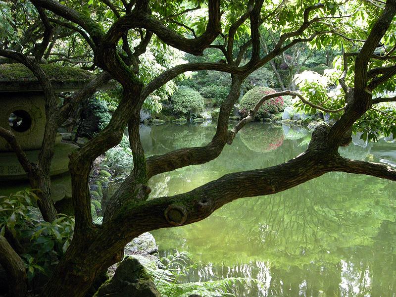 Non Gluten-Free Info: Portland Japanese Garden - Gluten Free Portland