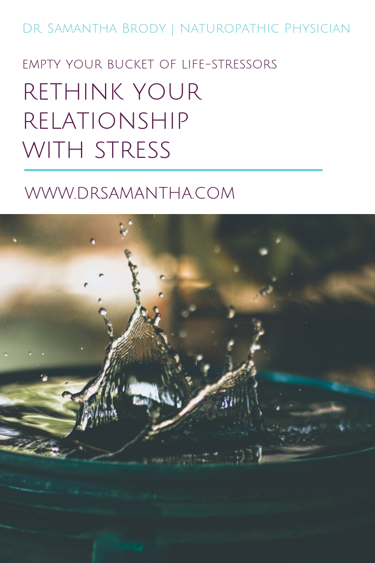 Rethink Your Relationship with Stress | Dr. Samantha Brody